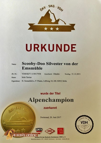Scooby-Alpenchampion-Urkunde